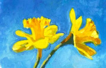 Your Guide To Summer Flowers: Daffodil