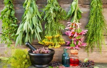 The Ritual In Plant Medicine Making