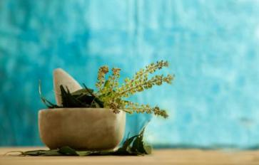 Grow Your Own Herbal Tea Garden With These 5 Herbs
